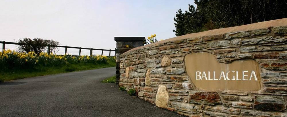 Ballaglea driveway
